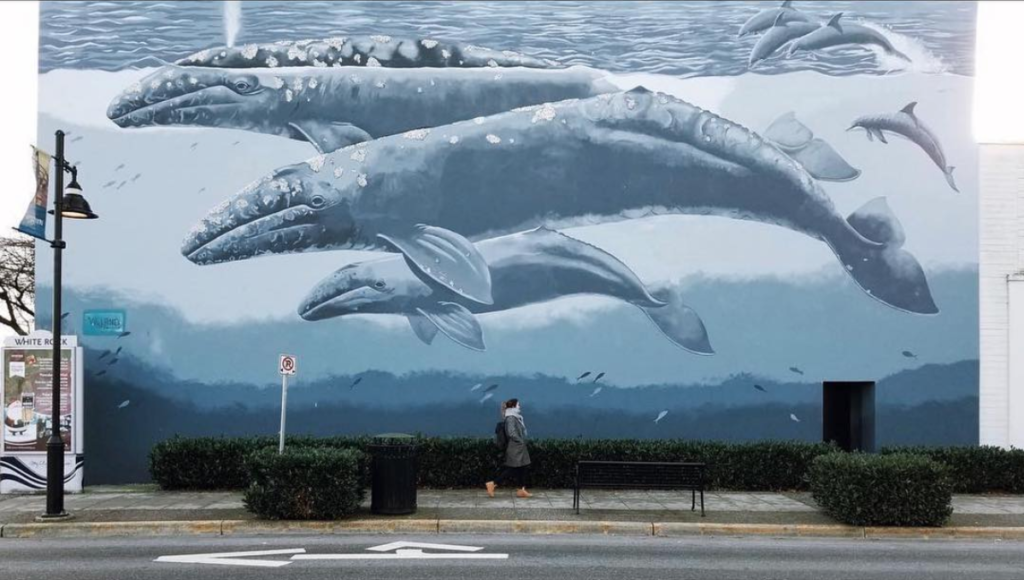 White Rock Whale Wall