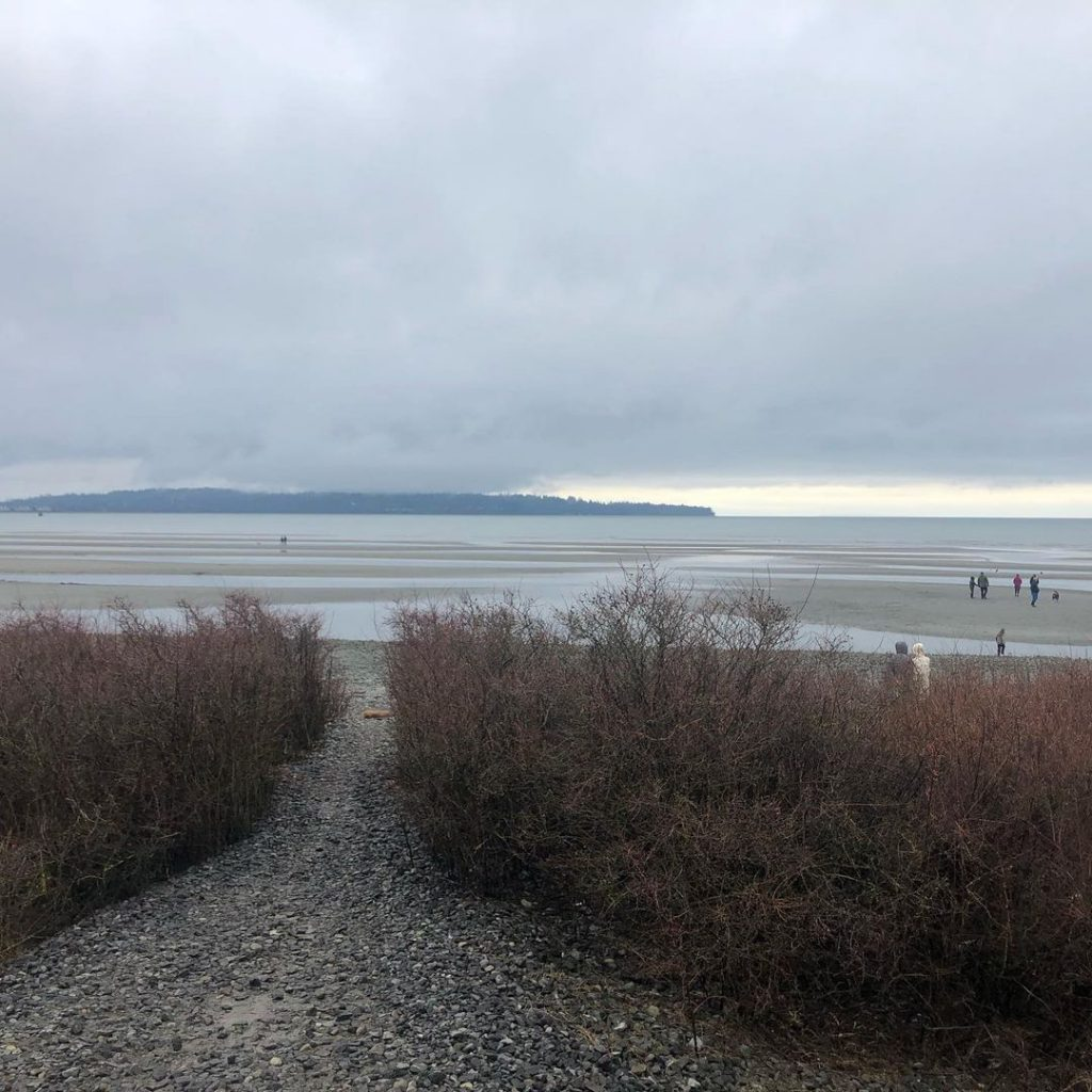 White Rock beach rain   susieverde